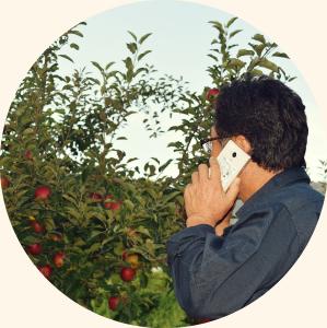 電話で注文する 写真